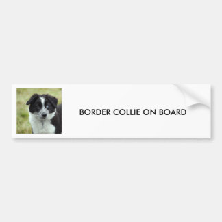 Border Collie puppy dog, BUMPER STICKER