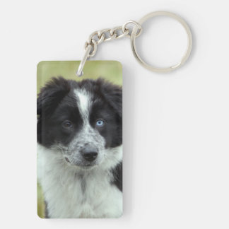 Border Collie puppy dog cute beautiful photo, gift Keychain