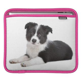 Border Collie Puppy Dog iPad Laptop Sleeve