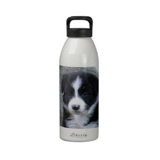 Border_Collie_Puppy _Farm_Life _ Botella De Agua Reutilizable