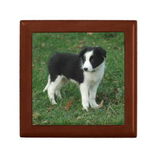 Border Collie Puppy Trinket Boxes