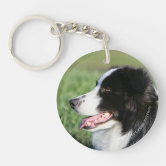 Border Collie Puppy Laying Down Keychain
