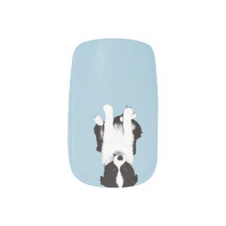 Border Collie Puppy Minx® Nail Art