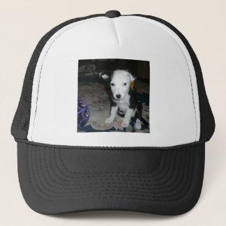 Border Collie Puppy Trucker Hat