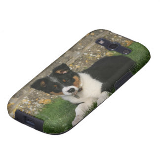 Border Collie Puppy with Leaf in Mouth Galaxy SIII Cases
