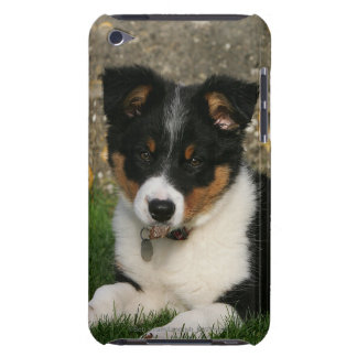 Border Collie Puppy with Leaf in Mouth iPod Touch Cover
