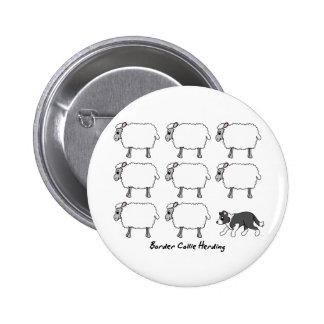 Border collie que reúne el botón de las ovejas pin