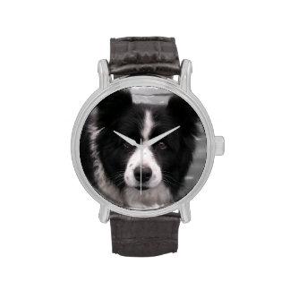 Border collie reloj de mano