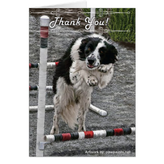 Border Collie Rescue Thank You Notes Cards