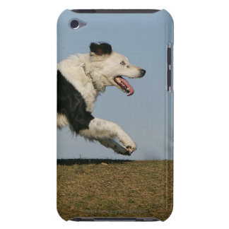 Border Collie Running 2 Barely There iPod Cover