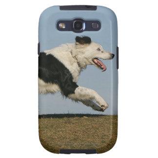 Border Collie Running 2 Samsung Galaxy SIII Cover
