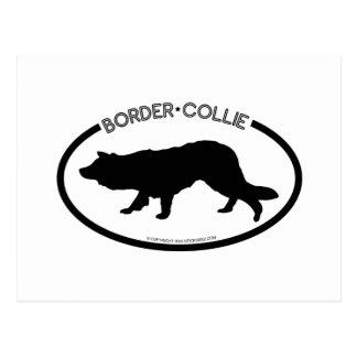 Border Collie Silhouette Black Postcard