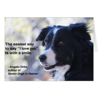 Border Collie Smile Notecard Greeting Card