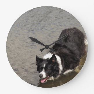 Border Collie standing in a River Large Clock