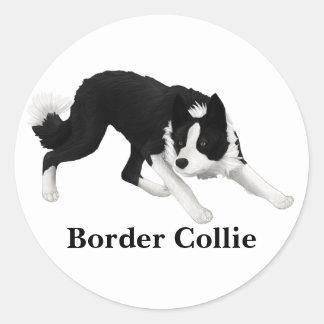 Border Collie Stare Classic Round Sticker