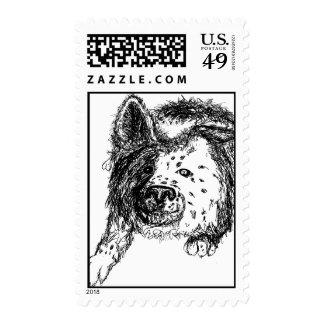 Border Collie Staredown Stamps
