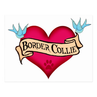 Border Collie Tattoo Heart Postcard