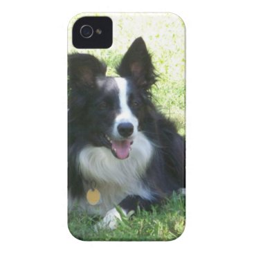 Coffee Themed Border Collie Tshirts iPhone 4 Case-Mate Case