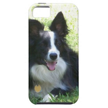 Coffee Themed Border Collie Tshirts iPhone SE/5/5s Case