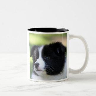 Border Collie Two-Tone Coffee Mug