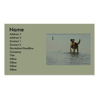 Border collie - volquete y gaviota tarjetas de negocios