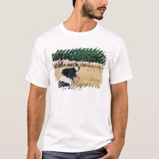 Border Collie Watching Sheep T-Shirt