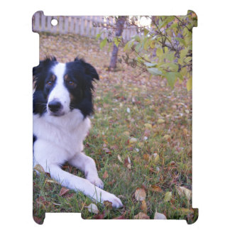 Border collie with autumn leaves case for the iPad 2 3 4