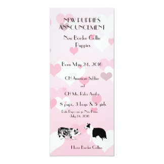 Border Collie with Pink and white Hearts Card