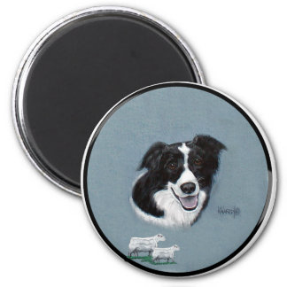 Border Collie with Sheep Magnet