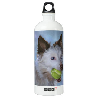 Border collie with tennis ball water bottle