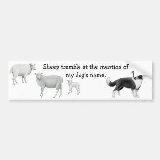 Border collie y ovejas que reúnen a la pegatina pa etiqueta de parachoque