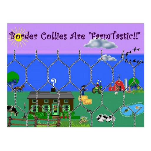 "Border Collies Are ""Farm Tastic""~Postcard"