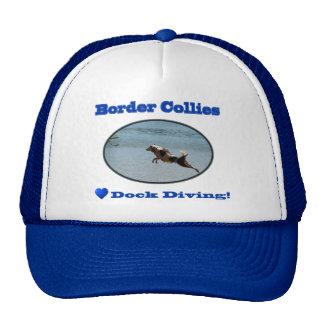Border collies love dock diving hat