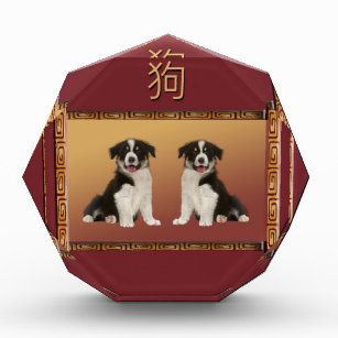 border collies on asian design chinese new year award