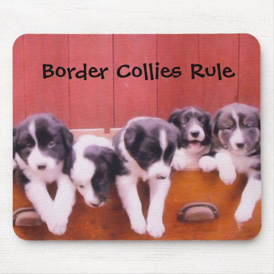Border Collies Rule Animal Mousepad
