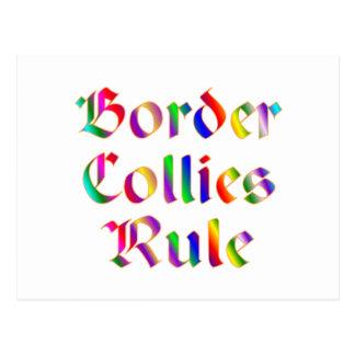 Border Collies Rule Postcard