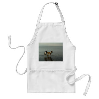 Border Collies - Tipper/Dixie at Sea Adult Apron