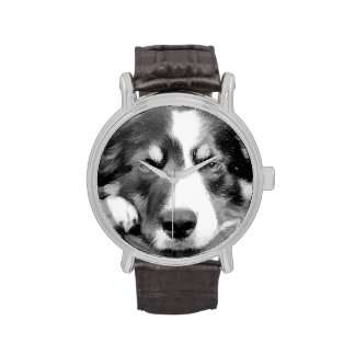 BORDER COLLIES WATCHES