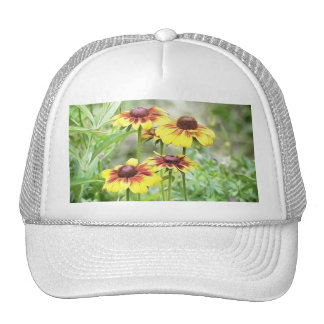 Border Garden Rudbeckias Trucker Hat