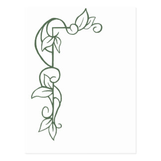 how to draw a vine border