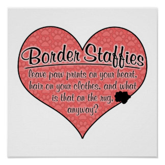 Border Staffy Paw Prints Dog Humor Poster