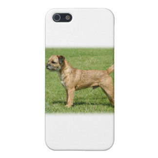 Border Terrier 9Y046D-035 Case For iPhone SE/5/5s
