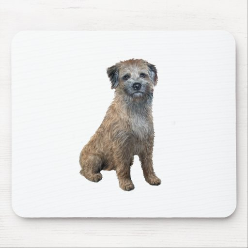 Border Terrier (A) Mouse Pad