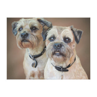 Border Terrier Canvas