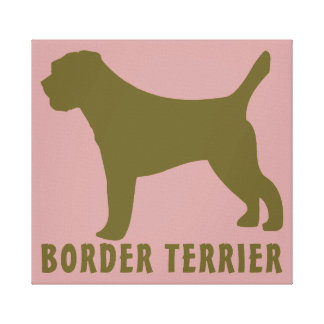 Border Terrier Canvas Print