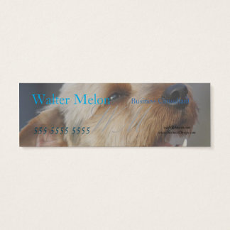 Border Terrier Cross Mini Business Card
