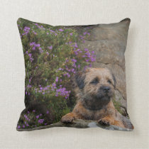 Border Terrier Dog In Wild Heather Throw Pillow