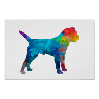 Border Terrier in watercolor Poster