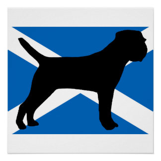 border terrier silhouette Scotland flag.png Poster