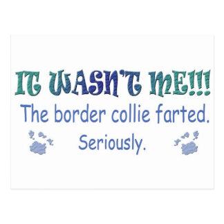 BorderCollie Postcard
